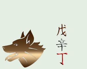 http://art-fenshui.ru/images/sobaka-skrytie-elementy.jpg